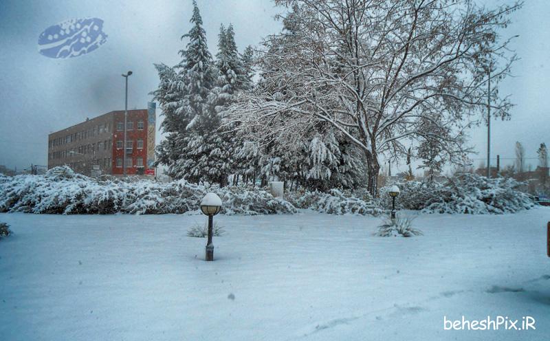 میدان بوستان