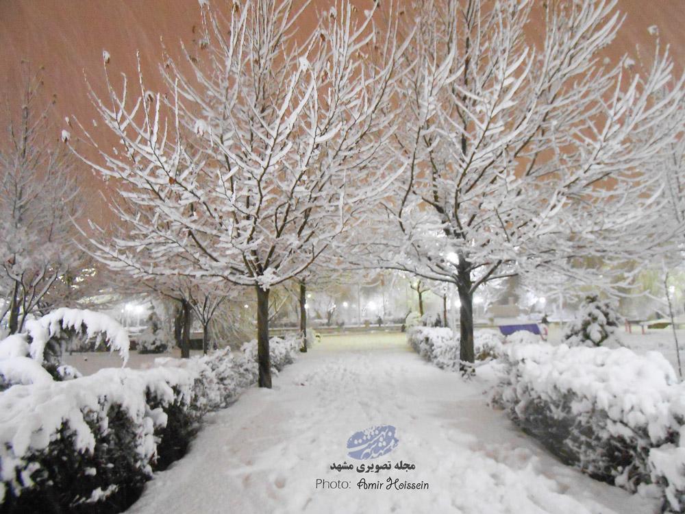 عکس های برفی مشهد 15 بهمن 95