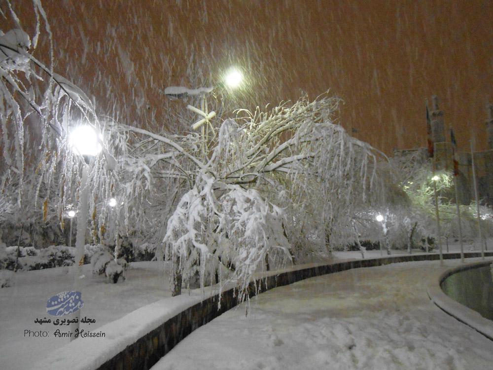 بوستان نیایش جاهدشهر در یک شب برفی