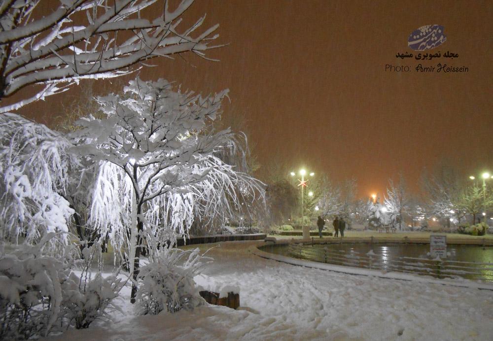 شب برفی جاهدشهر