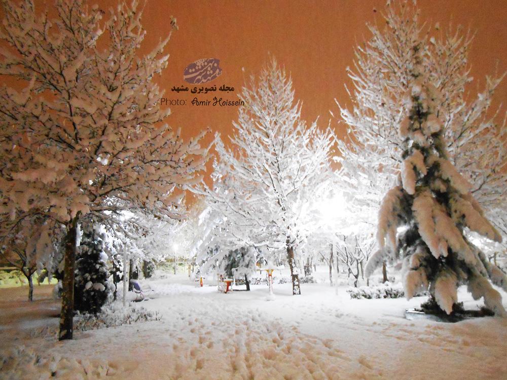 یک شب برفی فوق العاده رویایی