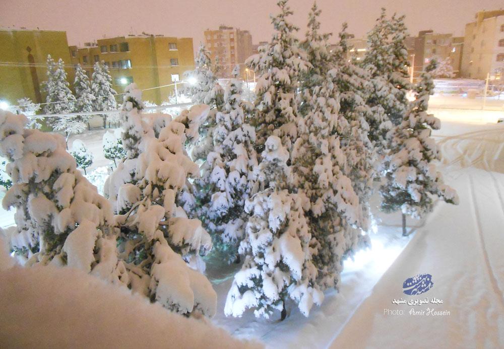 عکس های زیبای برفی مشهد