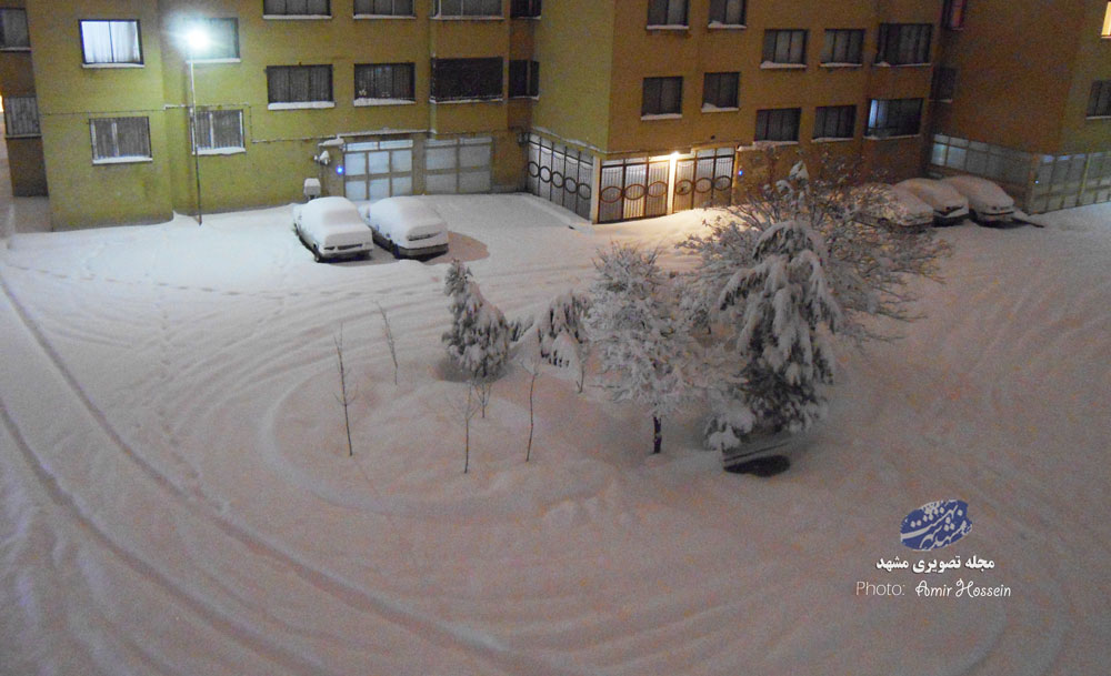 ایران زیر برف مدفون شد
