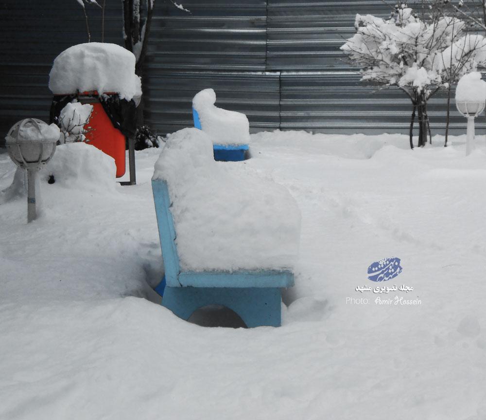 ارتفاع برف در دانشگاه پیام نور مشهد