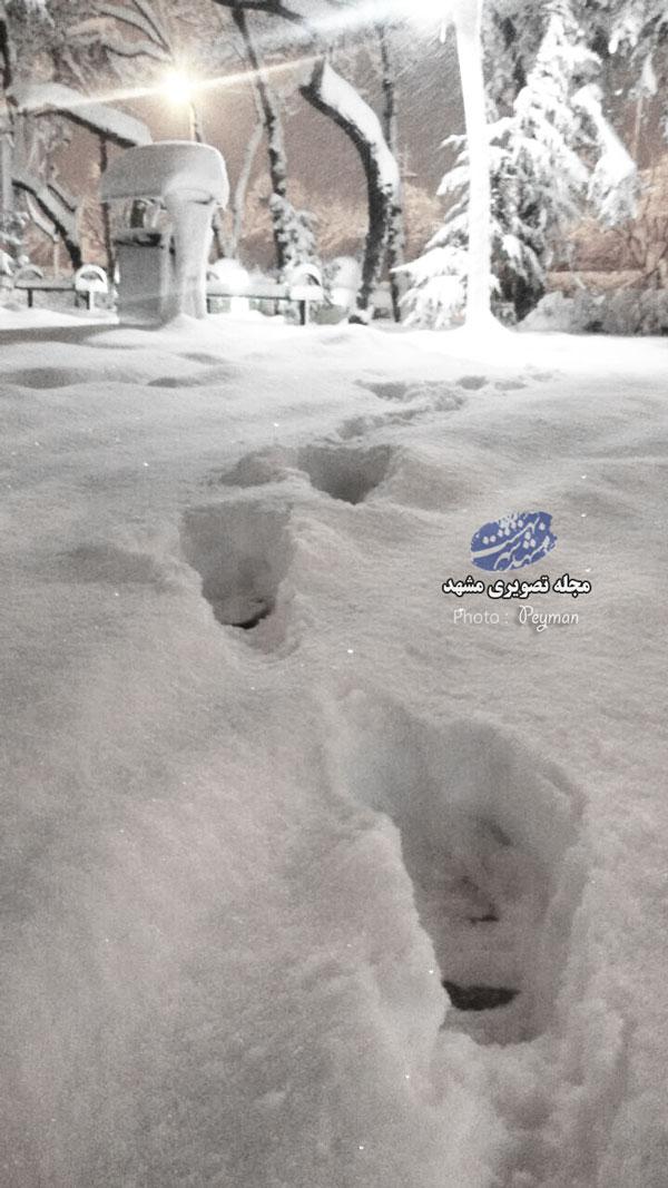 برف سنگین در بلوار شهید کامیاب
